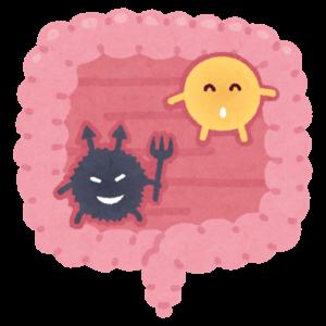 腸内細菌イラスト